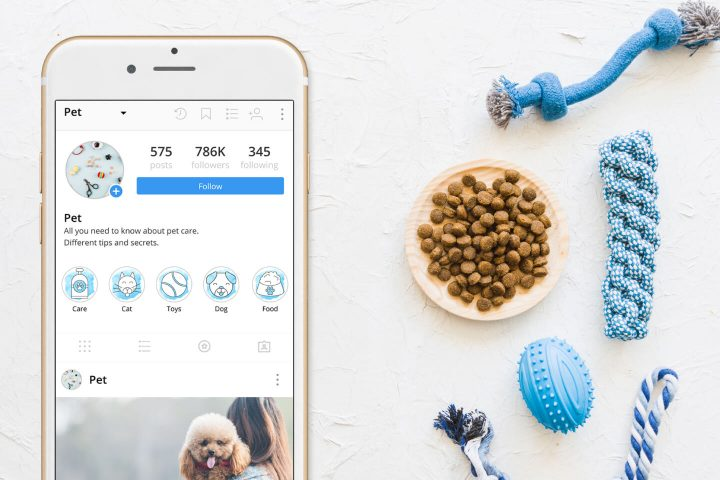 50 Pet Instagram Story Highlight Icons