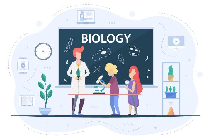 Biology at School Illustration